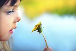 alergia y asma mallorca e ibiza
